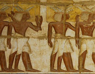 Grób pieśniarki znaleziono w Egipcie. Przypadkiem