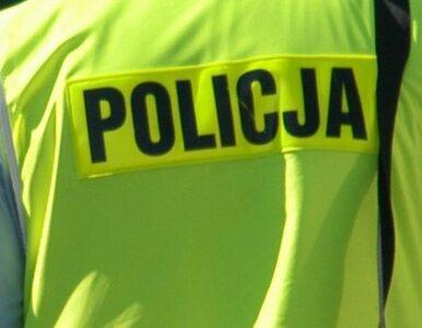 Śląsk: Staranował dwa radiowozy, chciał potrącić policjanta