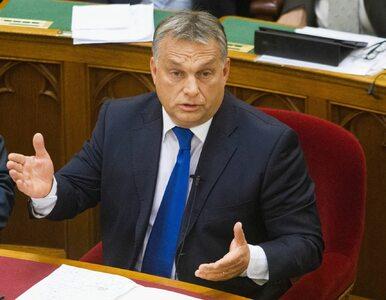 Konstytucyjny sprzeciw wobec przyjmowania uchodźców?  Orban złożył projekt